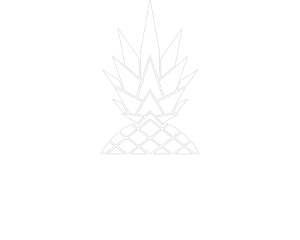 dan and mez footer logo